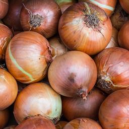 Cipolle bionde 500 gr