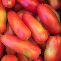 Pomodori da sugo – 5 kg