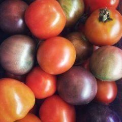 Pomodori misti