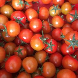 Pomodori ciliegini 400 gr