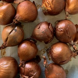 Cipolle cotte al forno